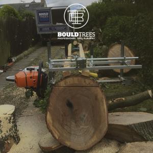 Bould Trees 1